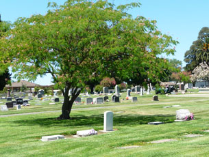 Cemetery Tours